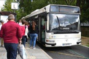bus tao